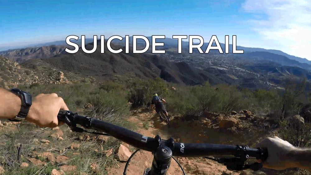 suicide-web