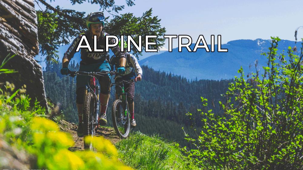 alpine-web.png
